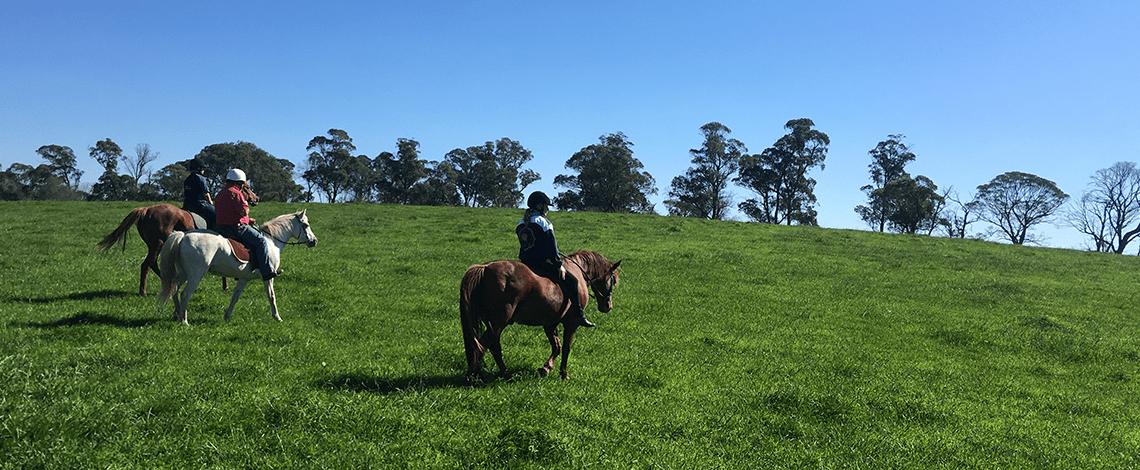 Horse riding at Ashton Park Moss Vale