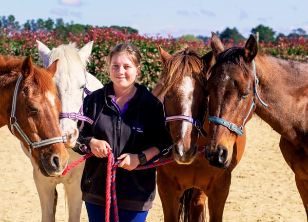 Equestrian Connections horses hosted at Ashton Park