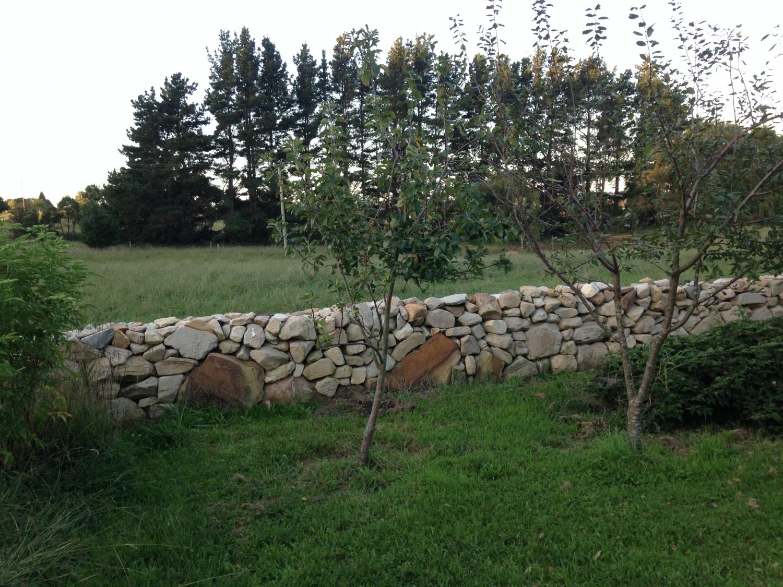 Ashton Park dry stone wall